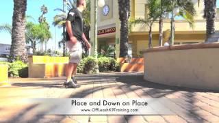 Private Dog Training Seminar Venice Beach WWE Announcer and Singer Lilian Garcia