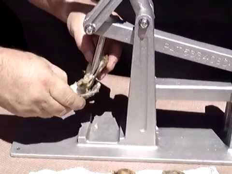 oyster opening machine