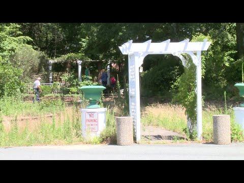 Video Now: Auction worker recalls memories of West Valley Inn