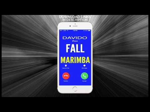 Latest iPhone Ringtone - Fall Marimba Remix Ringtone - Davido