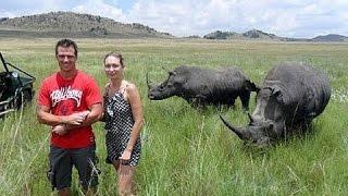 Жестокий фильм! Нападения носорогов на людей!Документальные фильмы, фильмы про животных