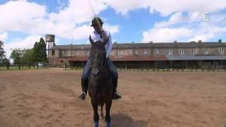 Pedrito, le français roi du polo