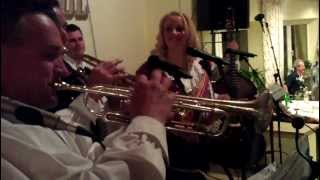 Ansambel Svetlin - Silberland LIVE