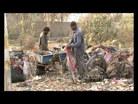 Garbage and pollution in Delhi!