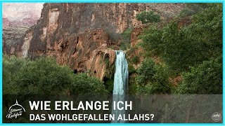 Wie erlange ich das Wohlgefallen Allahs? | Stimme des Kalifen