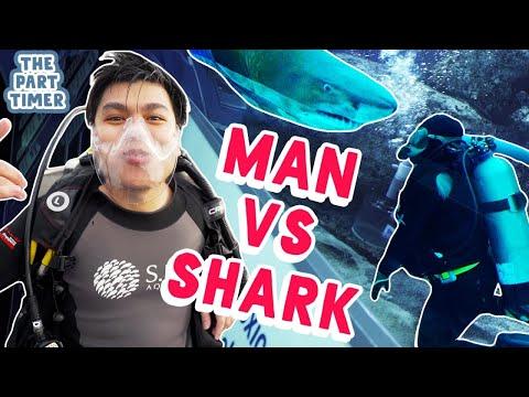 The Part Timer: Rainier Cleans A Shark Tank At S.E.A Aquarium