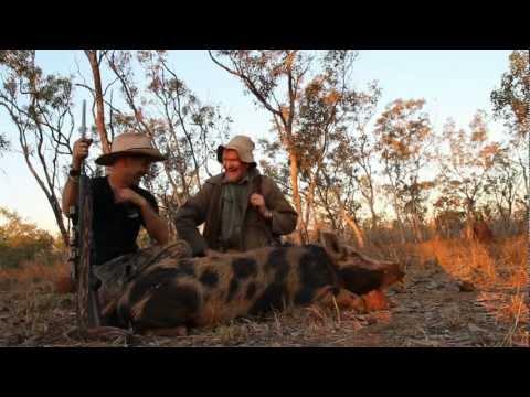 Hunting The Northern Territory - Wild Boar
