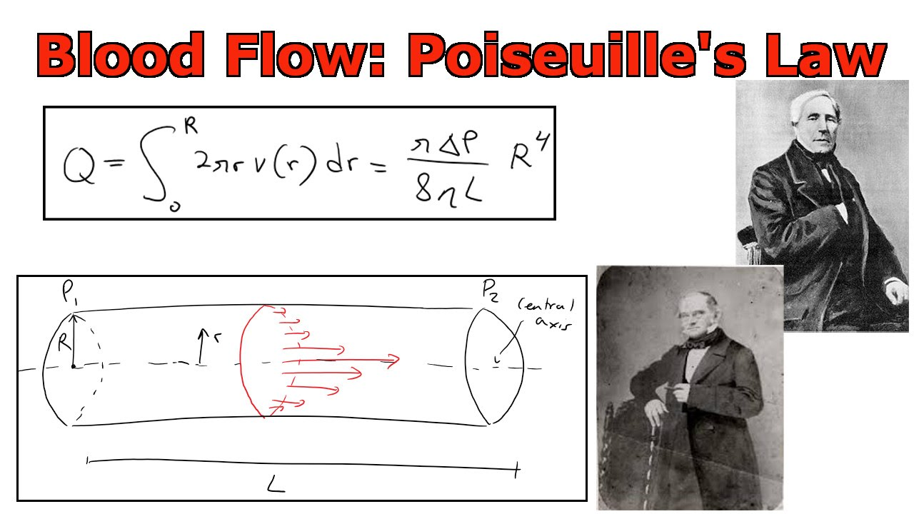 Applications of Integrals: Blood Flow: Poiseuille's Law