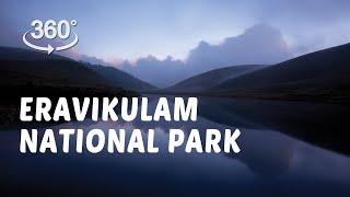 Eravikulam National Park | 360° Video