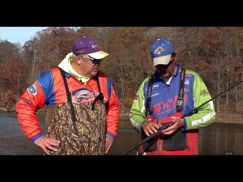 Jig Fishing Brush Piles On Kinkaid Lake (Kyle Schoenherr And Russ Bailey)