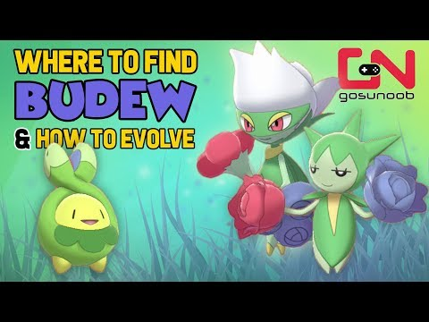 Where To Find Budew, Roselia & How To Evolve Into Roserade - Pokemon Sword And Shield Evolution