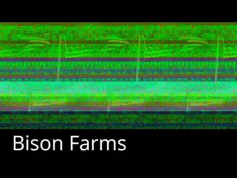 Bison Farms