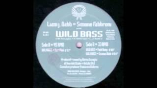 Liam J Nabb & Simone Fabbroni (Wild Bass  Funk Dump) 1995