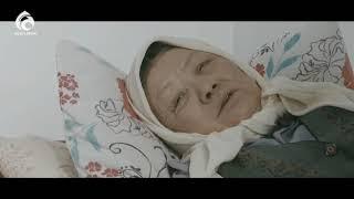 Алемди жылаткан видео омир алма кезек