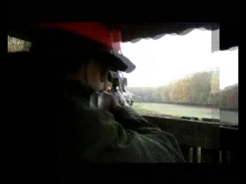 Wild Boar Hunting - Stalkaing -  High Seats  - LASAROTTA.CO.UK  - Chasse au sanglier