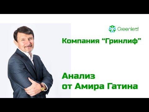 "Амир Гатин. Анализ идеи бизнеса компании ""Гринлиф"""