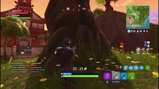 Skinny981 Fortnite destroying enemys in squad mode