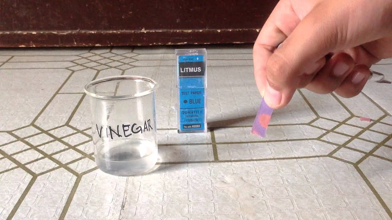 What is litmus paper