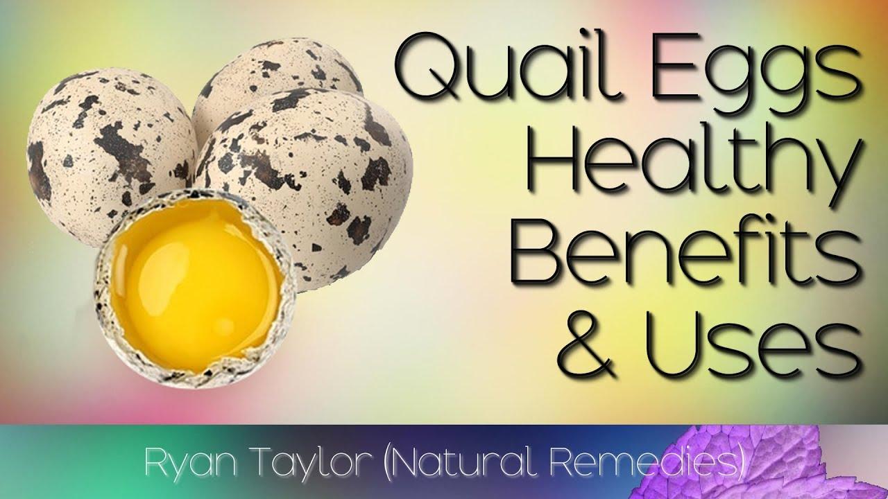 Quail Eggs Benefits, Risks, Nutrition - What are Quail Eggs Benefits?