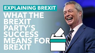 What the EU Election Results Mean for Brexit - Brexit Explained