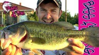 Ловля Огромных Окуней  Crazy Fish  Magic Stick Тизер