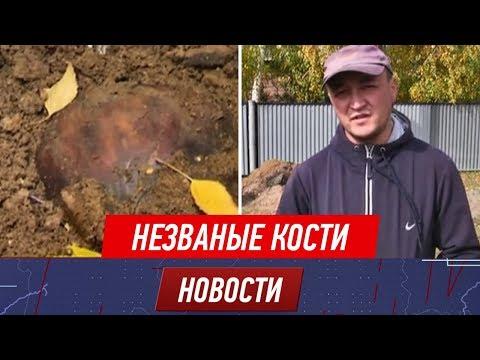 В пятницу, 13-го сельчанин выкопал в своём дворе три гроба с останками