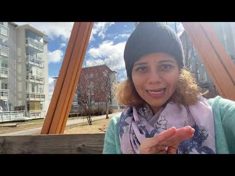 Understanding Healthcare system in Finland