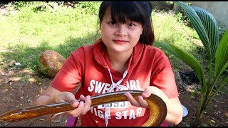 Cooking skills | how to cook eel - primitive life | survival skills. HT