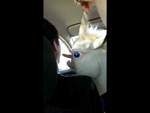 The Unicorn and It's Feelers [Poetry]