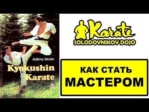 Как стать мастером каратэ по книге история из жизни / Адами Иштван  Фурко Кальман / Боевые искусства