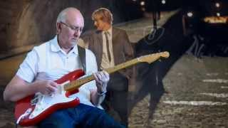 Groovy kind of love - Hank Marvin - cover by Dave Monk