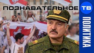 Как готовили свержение Батьки Лукашенко. Чем злили белорусских силовиков