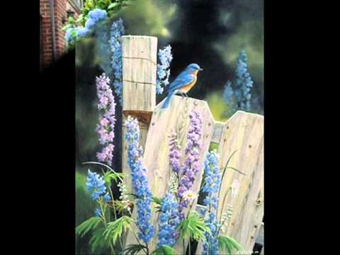 Annie's Song/Pan Flute Magic/The Magic of Instrumental Music.wmv