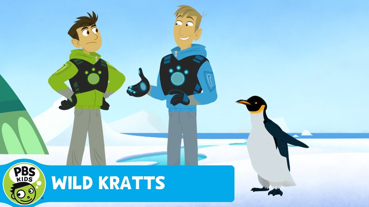 how to become a wild kratts kid