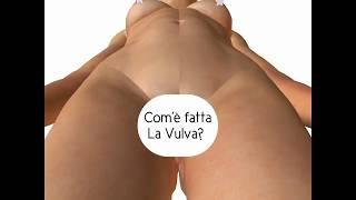 La Vulva per la rubrica #dentrolemutande