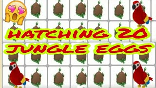 Hatching 20 jungle Eggs In Adopt Me