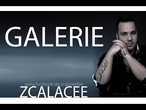 ZCALACEE - Galerie 2014