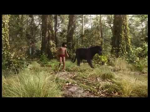 Download The jungle book best scene (in hindi)