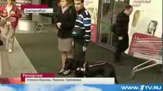 Слепой американец и верная собака - поводырь  приехали учиться в Россию...