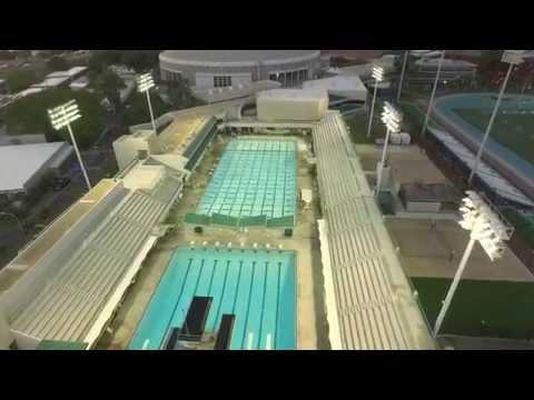 UH Manoa Swimming Pool