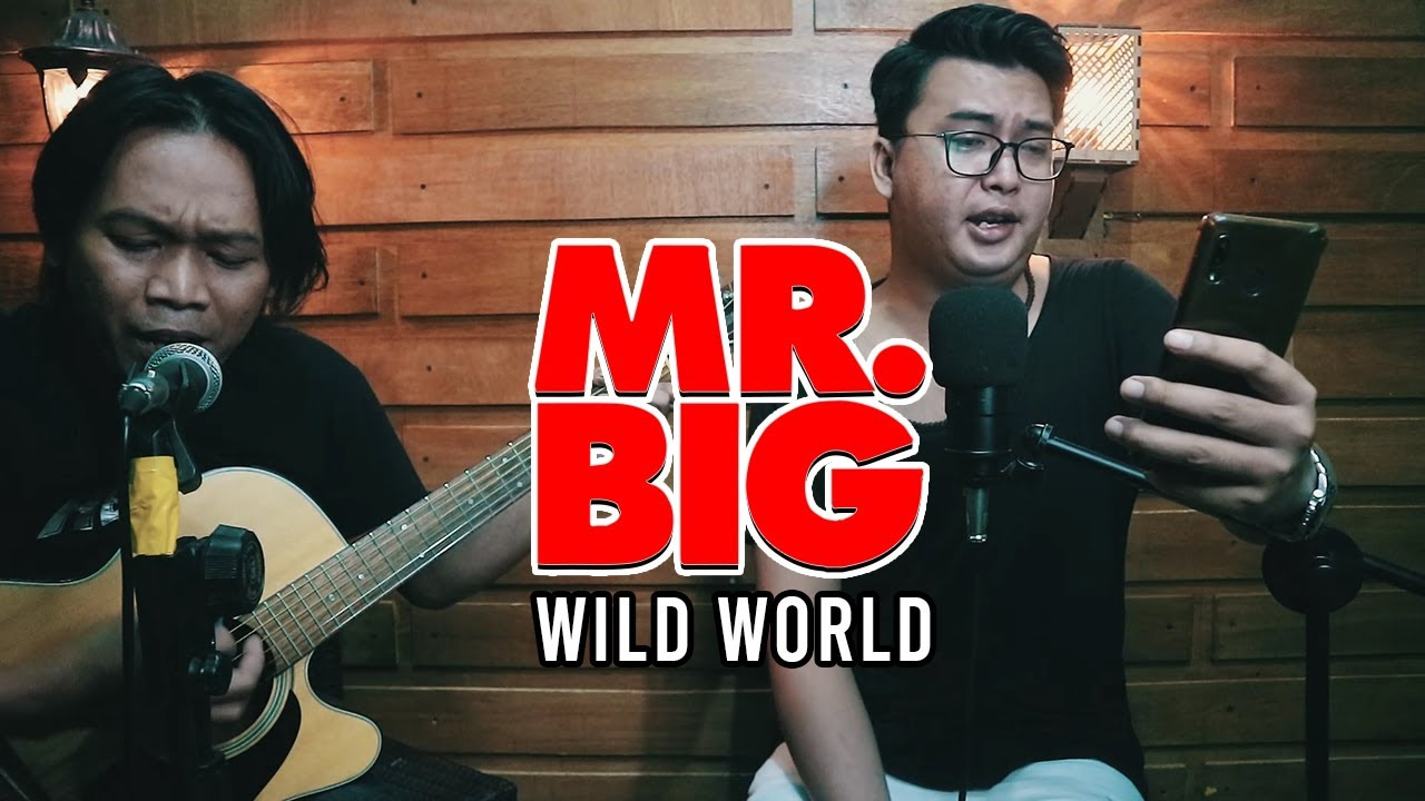 Mr. BIG - Wild World Cover Acoustic