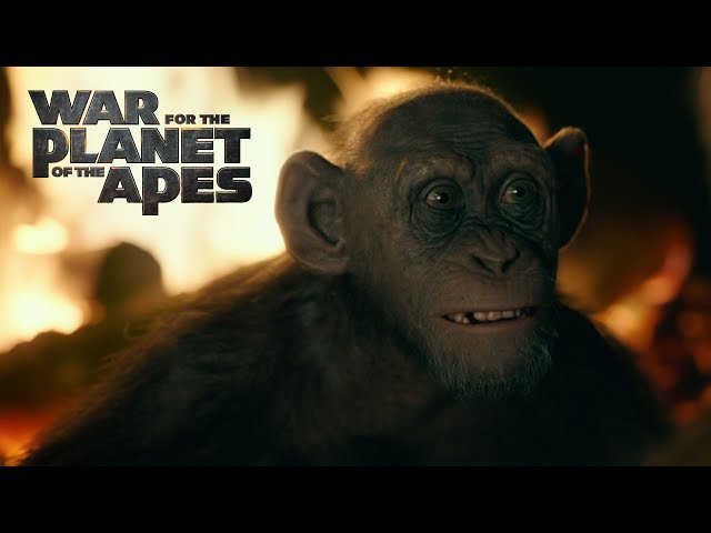 War for the Planet of the Apes Video 3
