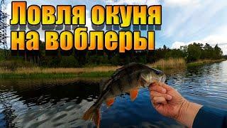 Ловля окуня на воблеры Рыбалка на ультралайт Спиннинг 2021