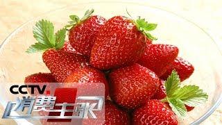 《消费主张》 20190507 水果里的消费升级:白雪公主诞生记| CCTV财经