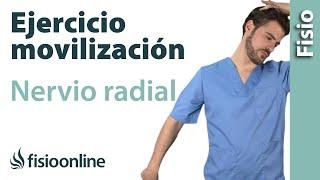 Movilización del nervio radial