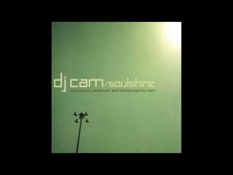 dj cam - love junkee(dub mix)