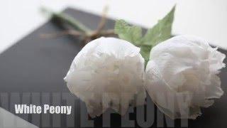 How to make Crepepaper Flowers: Peony EASY&SIMPLE