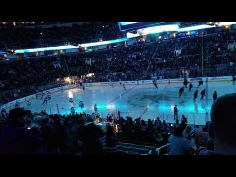 Oilers vs Sharks 04/06/17
