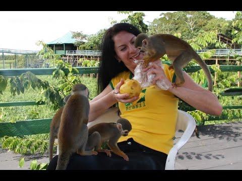 бразилия знакомства