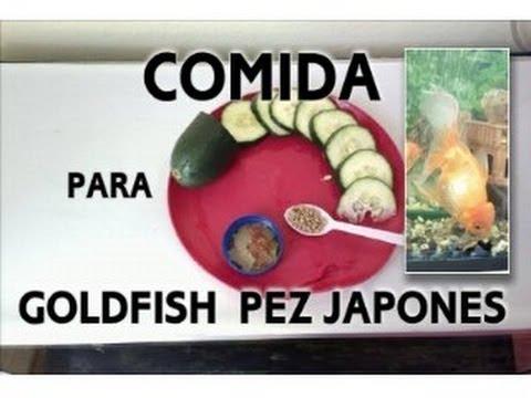 Alimento para goldfish o pez japones youtube for Alimento para goldfish
